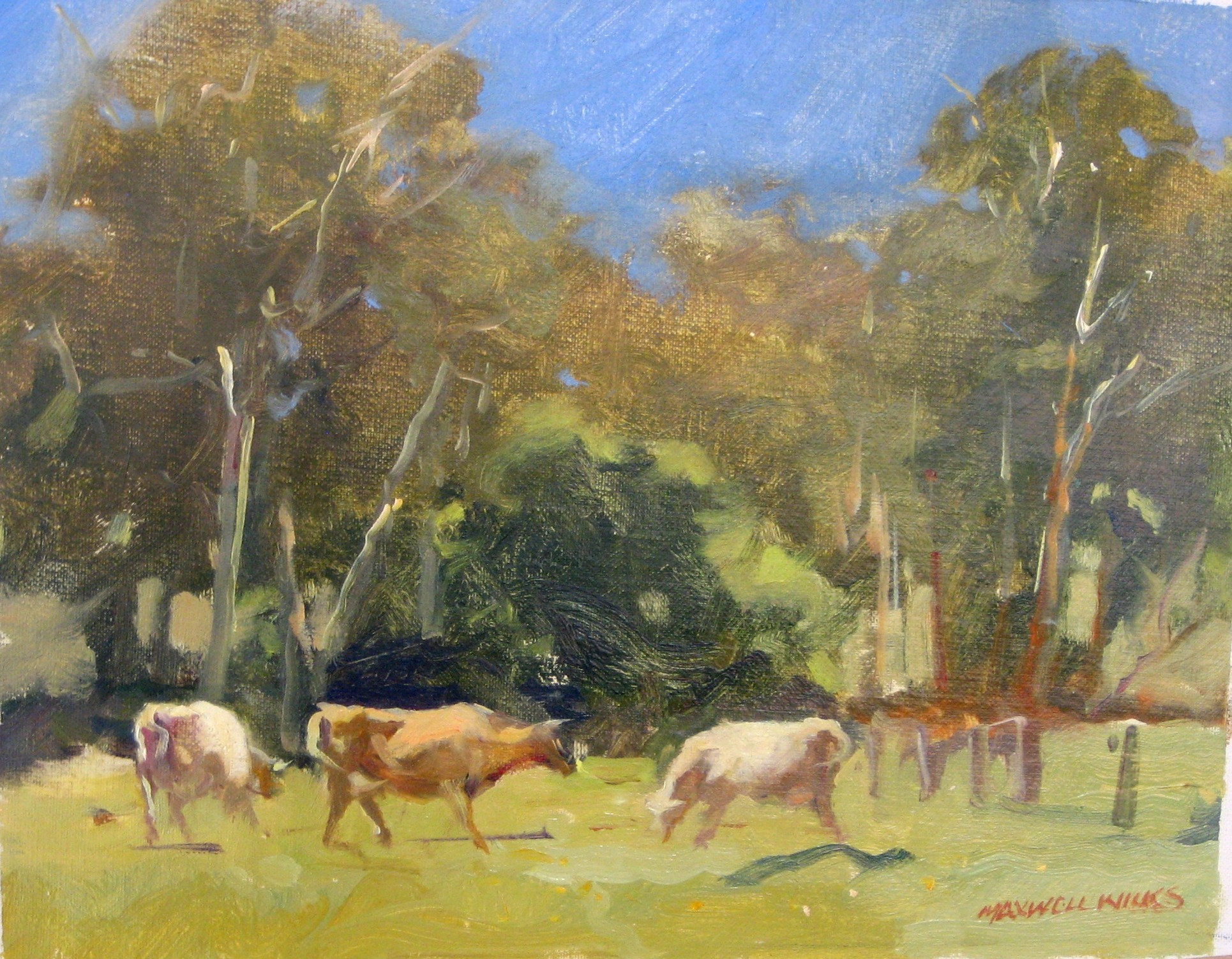 10 Three Cows,